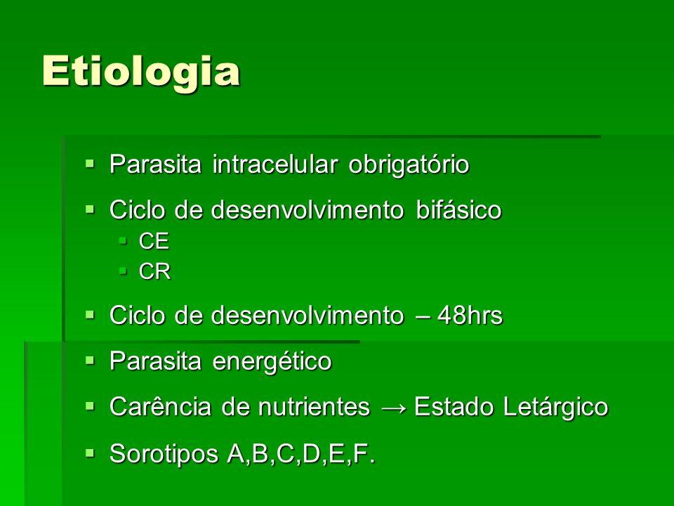 Etiologia Parasita intracelular obrigatório