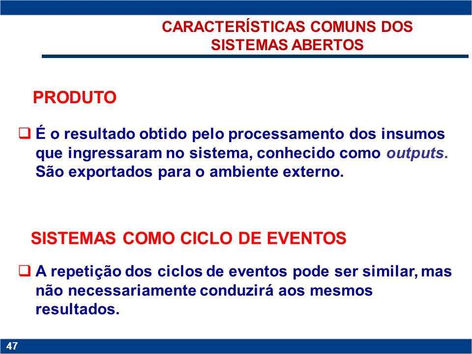 CARACTERÍSTICAS COMUNS DOS SISTEMAS ABERTOS