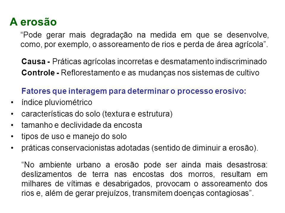 A erosão Pode gerar mais degradação na medida em que se desenvolve, como, por exemplo, o assoreamento de rios e perda de área agrícola .