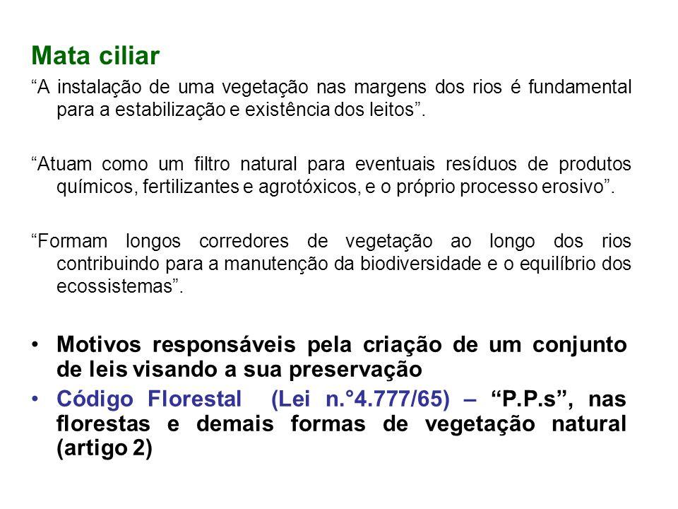 Mata ciliar A instalação de uma vegetação nas margens dos rios é fundamental para a estabilização e existência dos leitos .