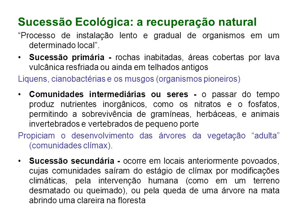 Sucessão Ecológica: a recuperação natural