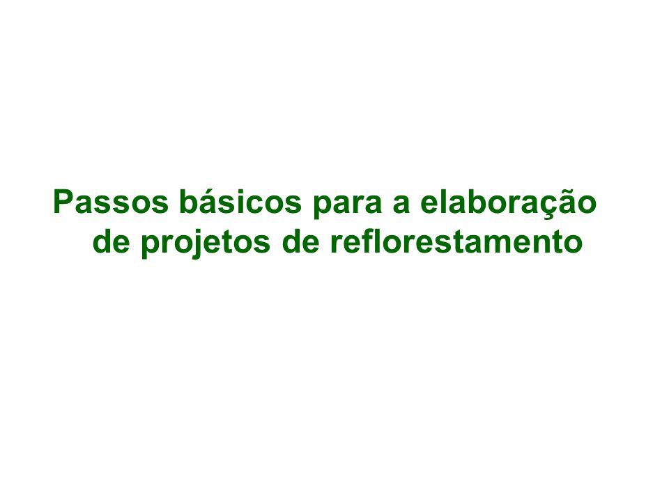 Passos básicos para a elaboração de projetos de reflorestamento
