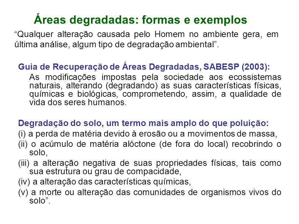 Áreas degradadas: formas e exemplos