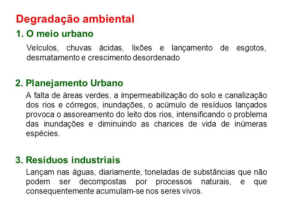 Degradação ambiental 1. O meio urbano