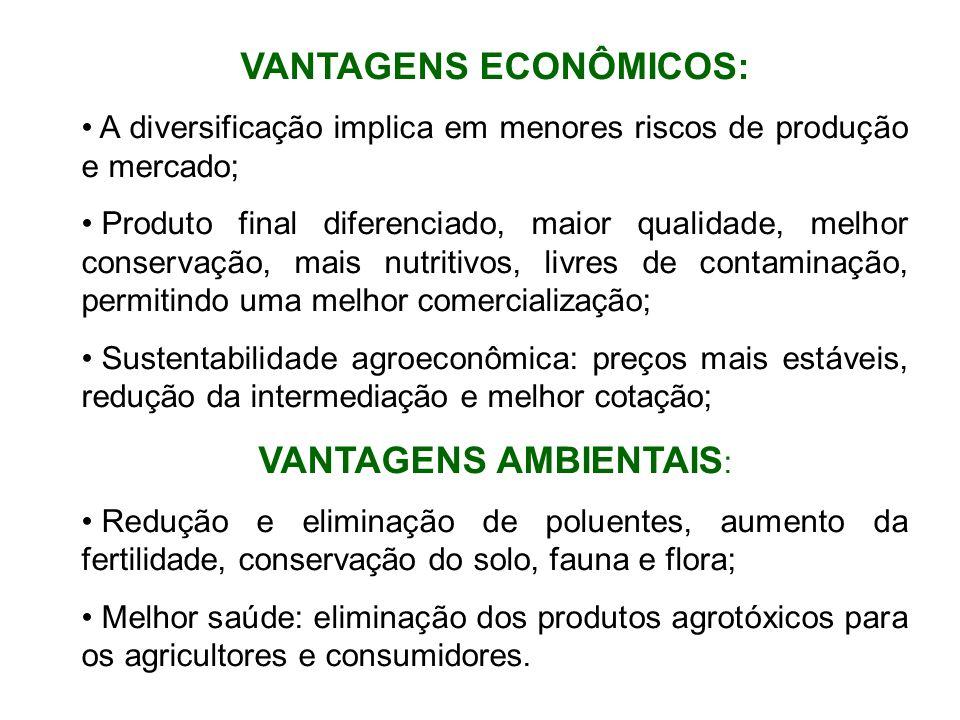 VANTAGENS ECONÔMICOS: