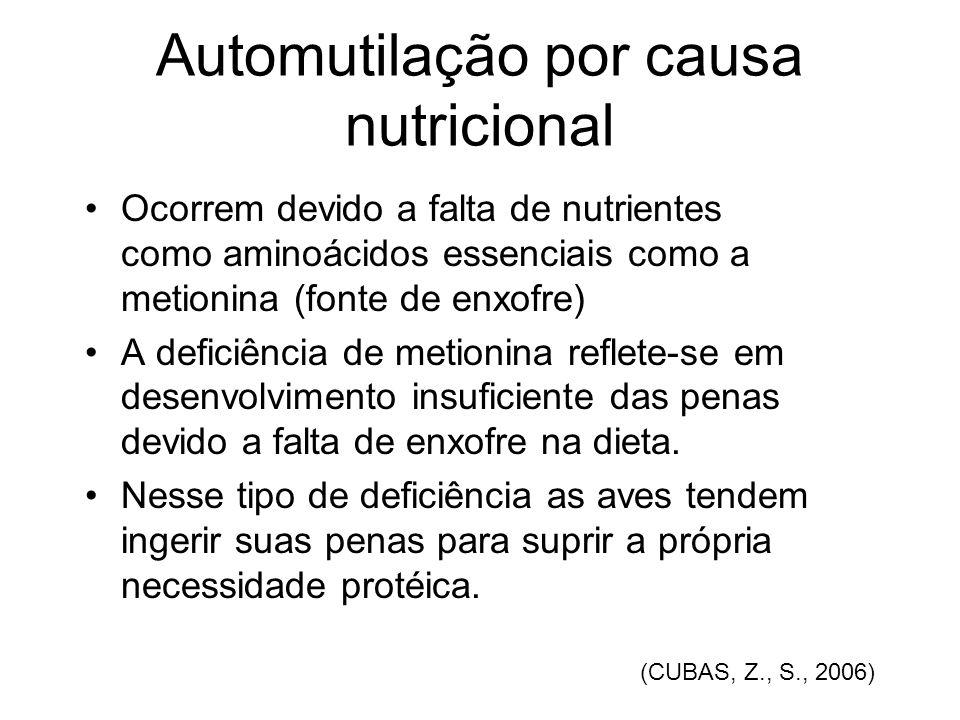 Automutilação por causa nutricional