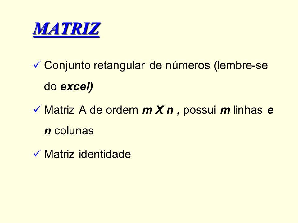 MATRIZ Conjunto retangular de números (lembre-se do excel)