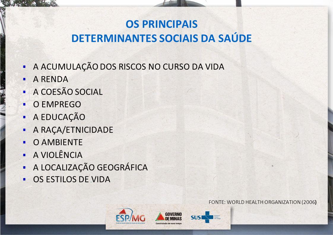 OS PRINCIPAIS DETERMINANTES SOCIAIS DA SAÚDE