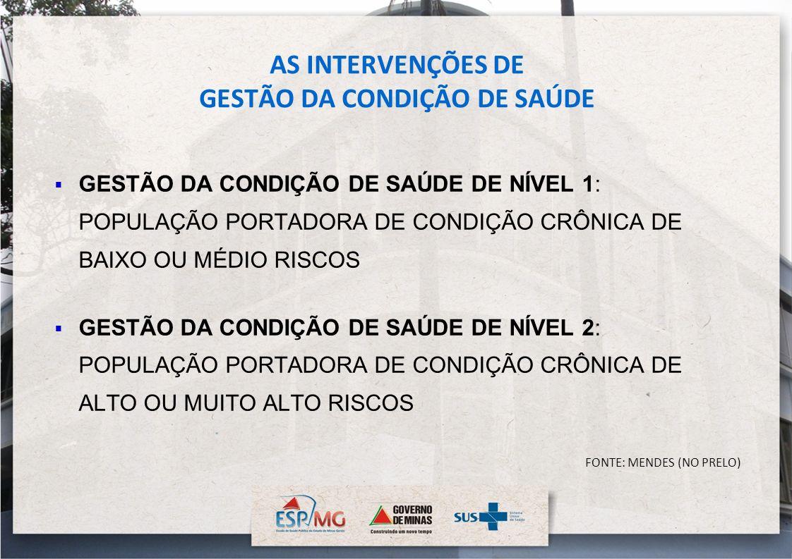 AS INTERVENÇÕES DE GESTÃO DA CONDIÇÃO DE SAÚDE