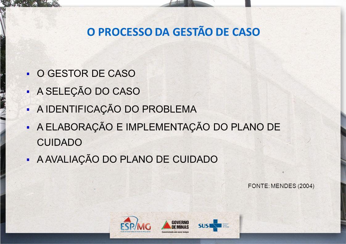 O PROCESSO DA GESTÃO DE CASO