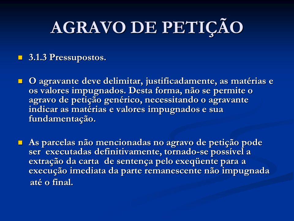 AGRAVO DE PETIÇÃO 3.1.3 Pressupostos.