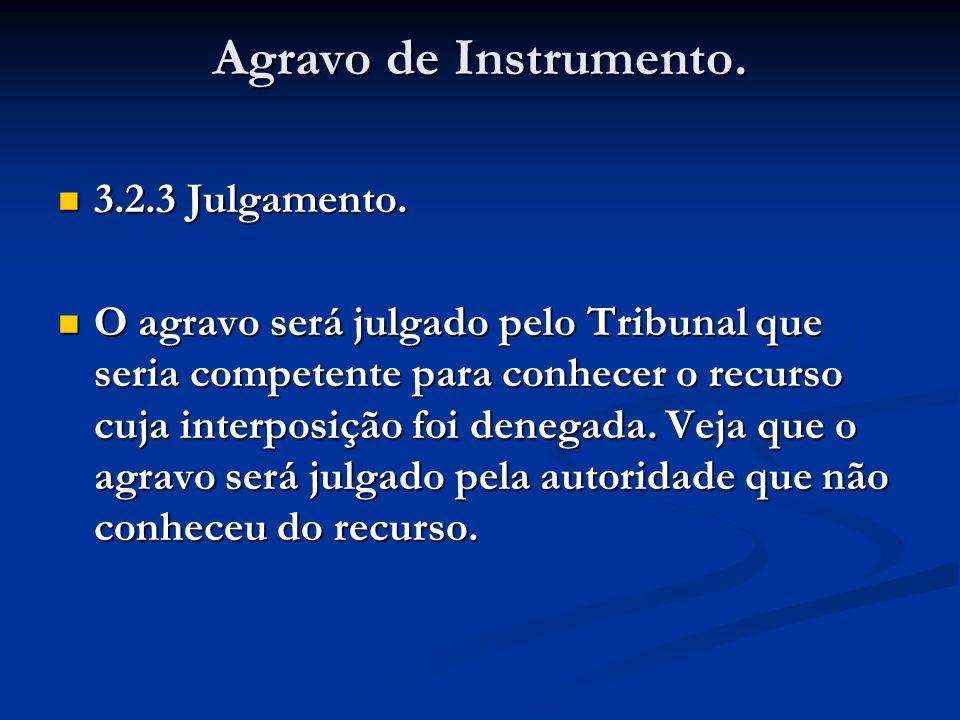 Agravo de Instrumento. 3.2.3 Julgamento.