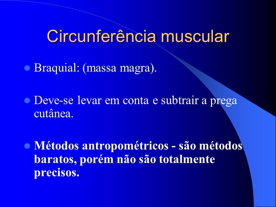 Circunferência muscular