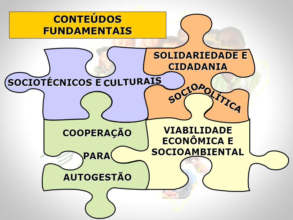 CONTEÚDOS FUNDAMENTAIS