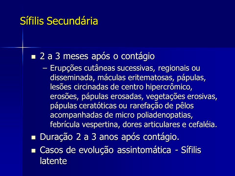 Sífilis Secundária 2 a 3 meses após o contágio