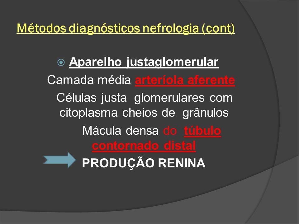 Métodos diagnósticos nefrologia (cont)