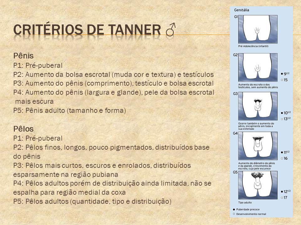 Critérios de tanner ♂ Pênis Pêlos P1: Pré-puberal