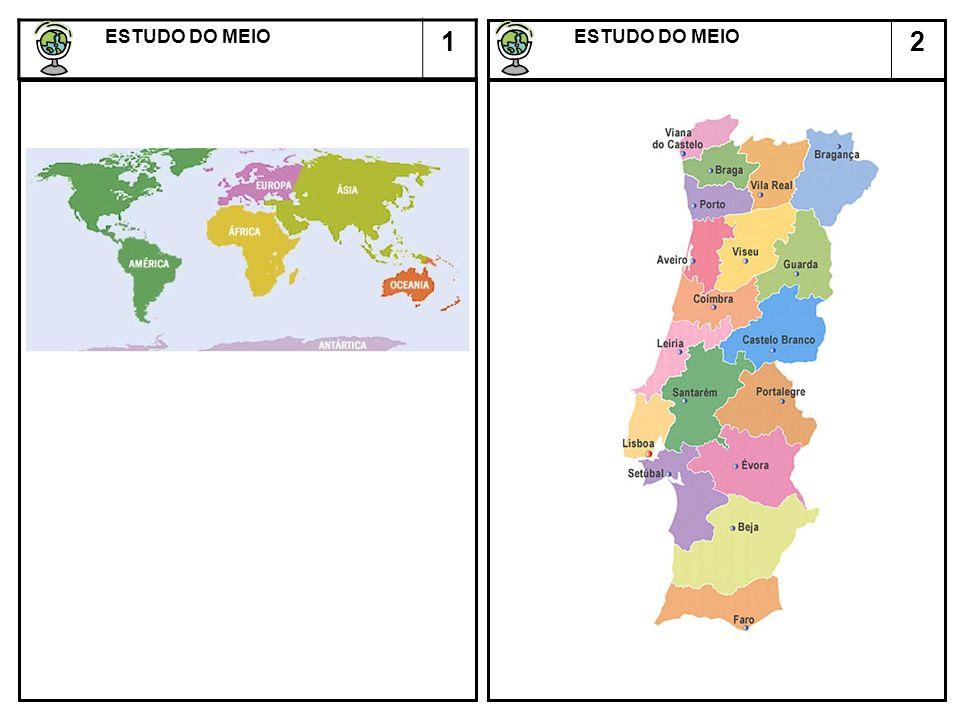 ESTUDO DO MEIO 1 ESTUDO DO MEIO 2