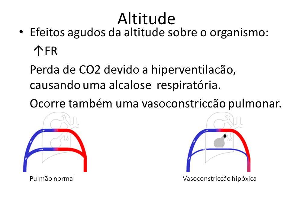 Altitude Efeitos agudos da altitude sobre o organismo: ↑FR