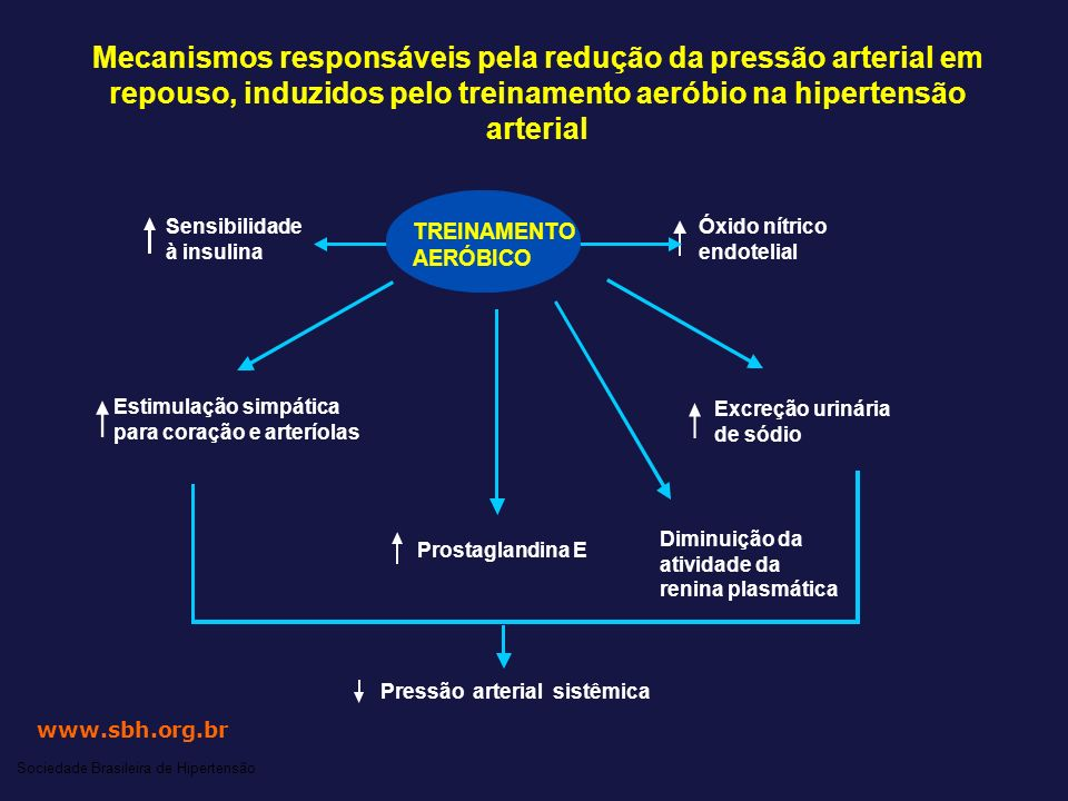 Mecanismos responsáveis pela redução da pressão arterial em repouso, induzidos pelo treinamento aeróbio na hipertensão arterial