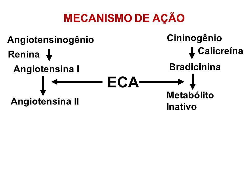 ECA MECANISMO DE AÇÃO Cininogênio Angiotensinogênio Calicreína Renina