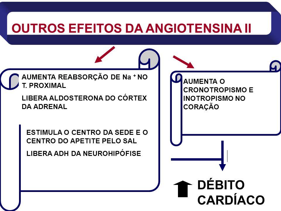 OUTROS EFEITOS DA ANGIOTENSINA II