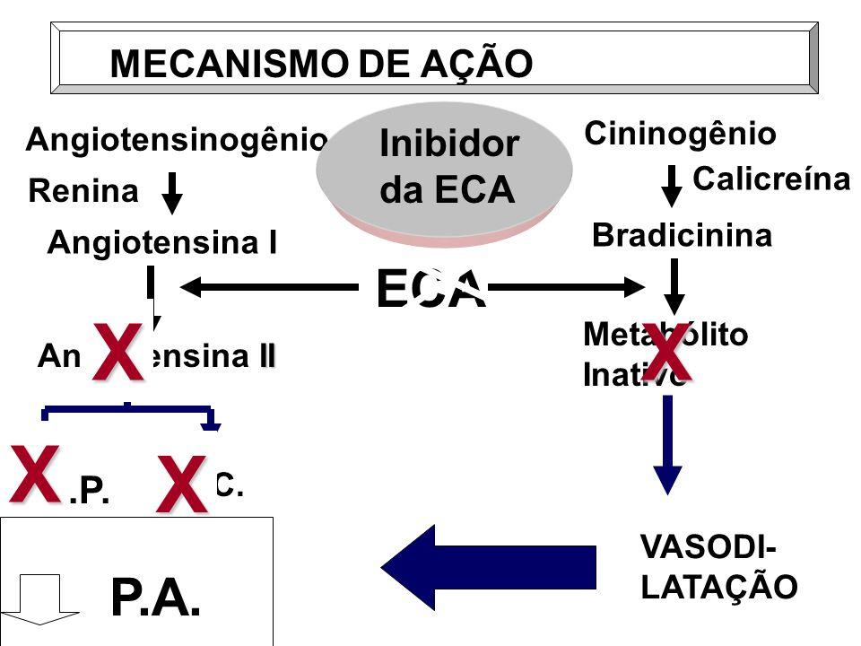 X X ECA P.A. MECANISMO DE AÇÃO Inibidor da ECA R.P. P.A Cininogênio