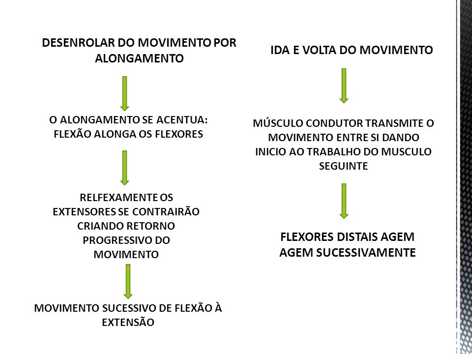DESENROLAR DO MOVIMENTO POR ALONGAMENTO IDA E VOLTA DO MOVIMENTO