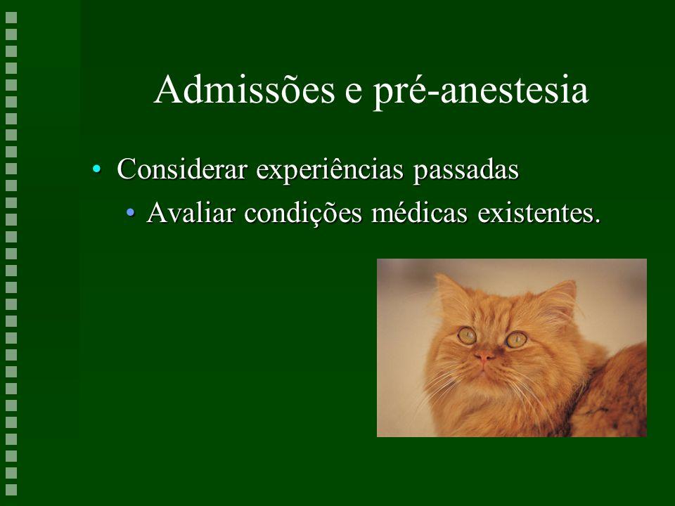 Admissões e pré-anestesia