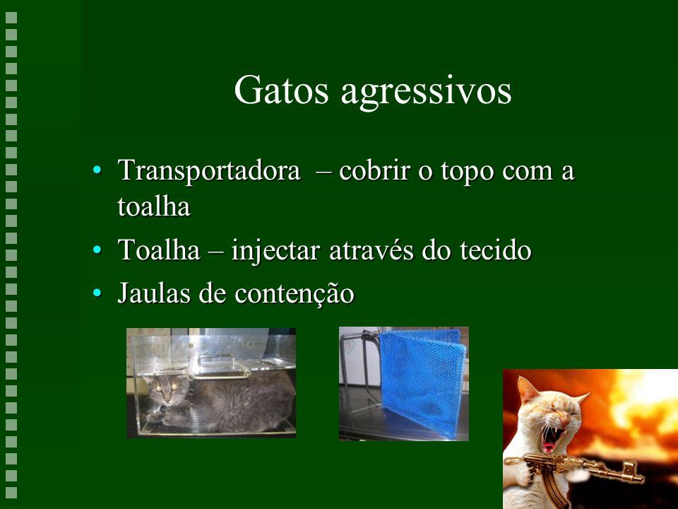 Gatos agressivos Transportadora – cobrir o topo com a toalha