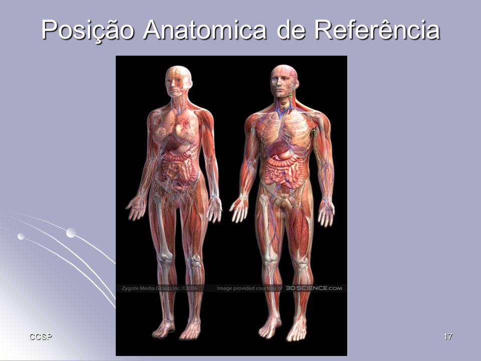Posição Anatomica de Referência