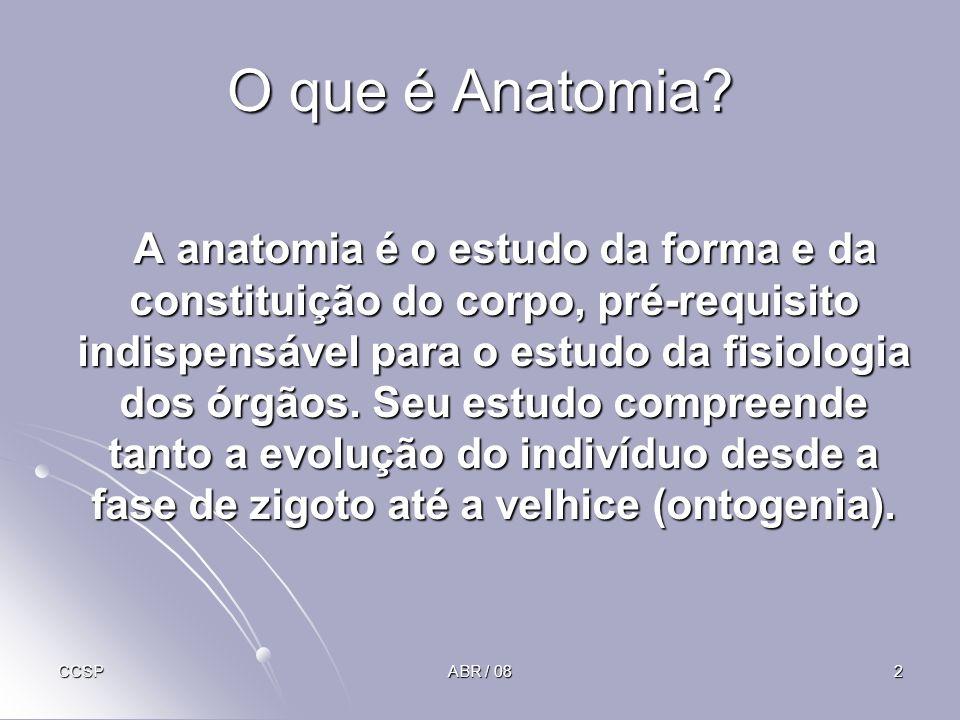 O que é Anatomia