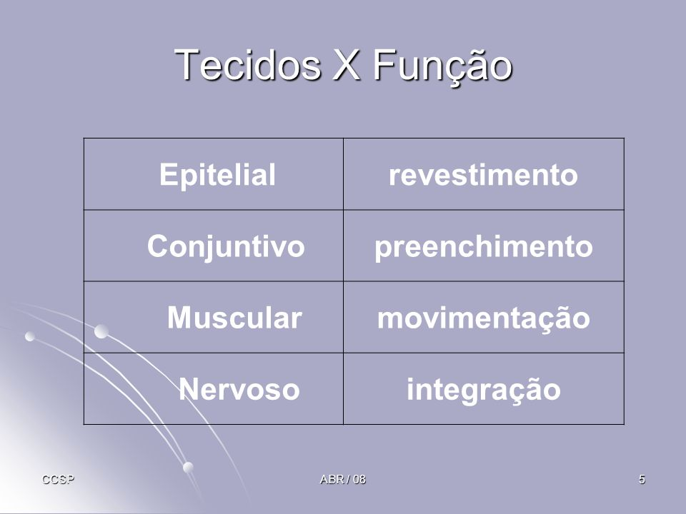 Tecidos X Função Epitelial revestimento Conjuntivo preenchimento