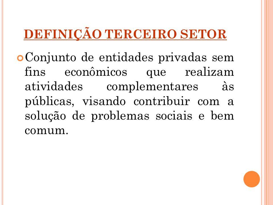 DEFINIÇÃO TERCEIRO SETOR