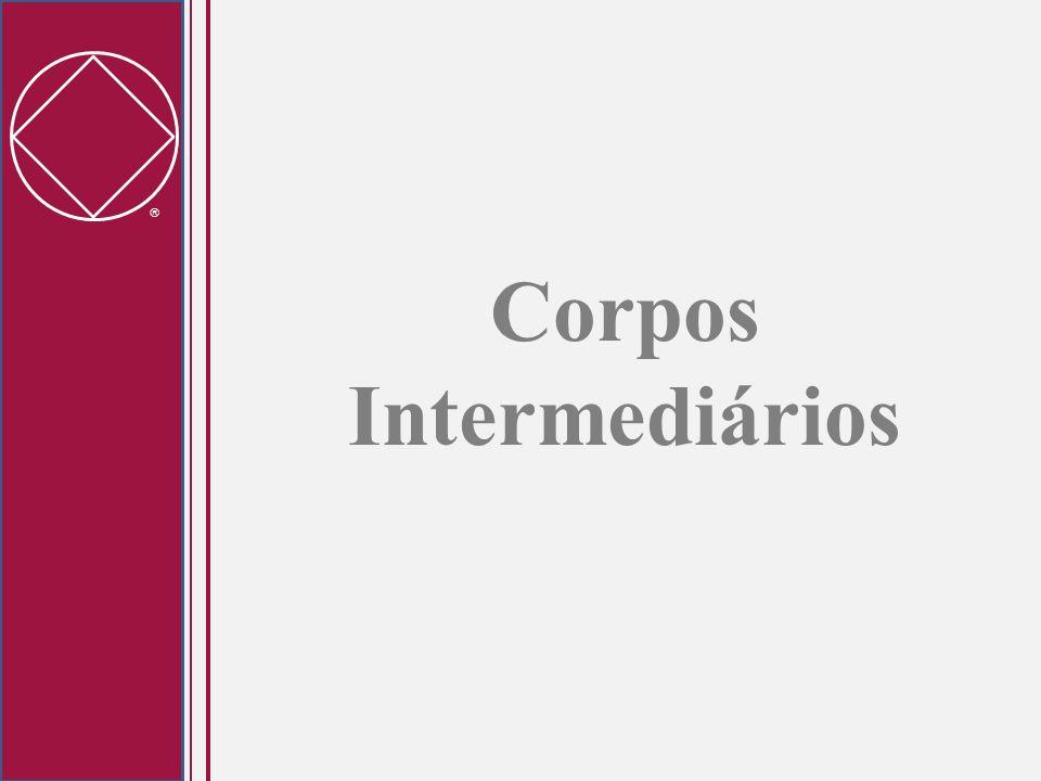 Corpos Intermediários