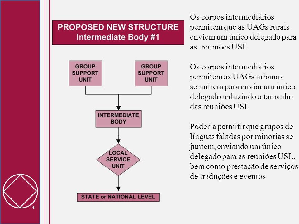 Os corpos intermediários permitem que as UAGs rurais enviem um único delegado para as reuniões USL