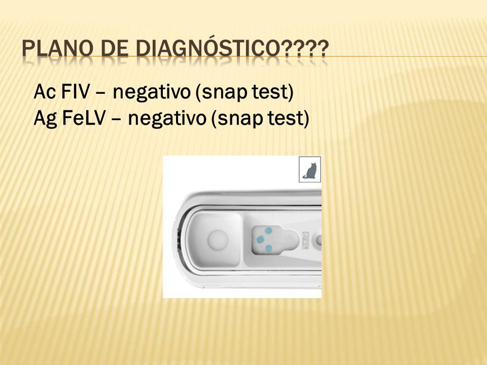 PLANO DE Diagnóstico Ac FIV – negativo (snap test)