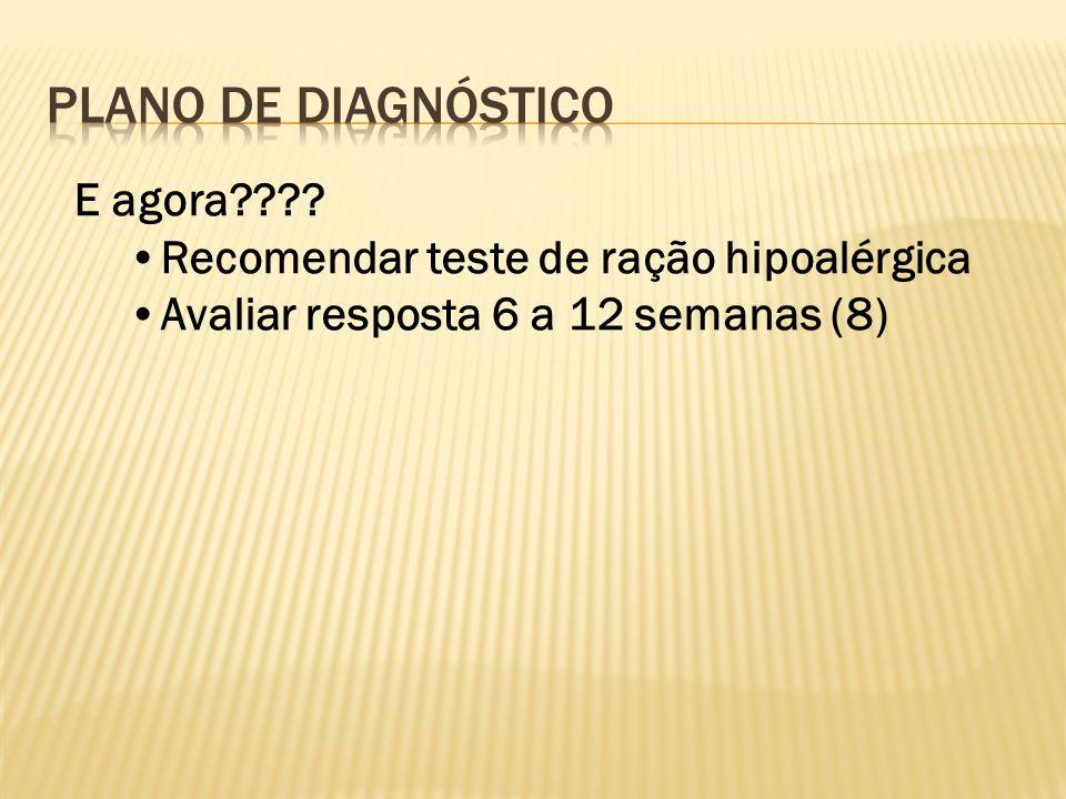 PLANO DE Diagnóstico E agora