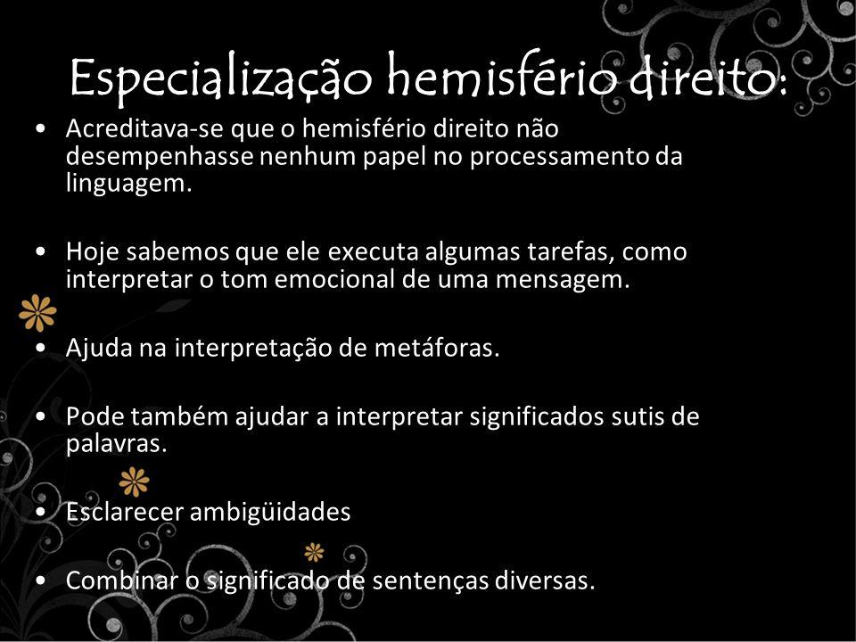 Especialização hemisfério direito: