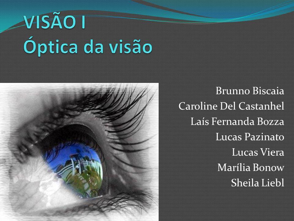 VISÃO I Óptica da visão Brunno Biscaia Caroline Del Castanhel