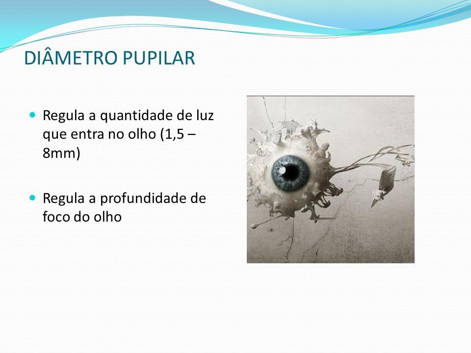 DIÂMETRO PUPILAR Regula a quantidade de luz que entra no olho (1,5 – 8mm) Regula a profundidade de foco do olho.
