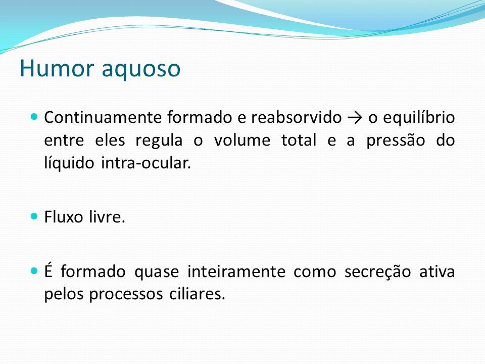 Humor aquoso Continuamente formado e reabsorvido → o equilíbrio entre eles regula o volume total e a pressão do líquido intra-ocular.