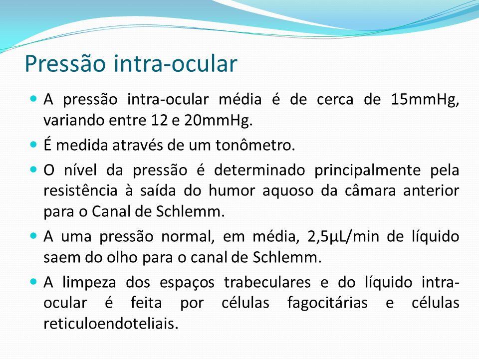 Pressão intra-ocular A pressão intra-ocular média é de cerca de 15mmHg, variando entre 12 e 20mmHg.