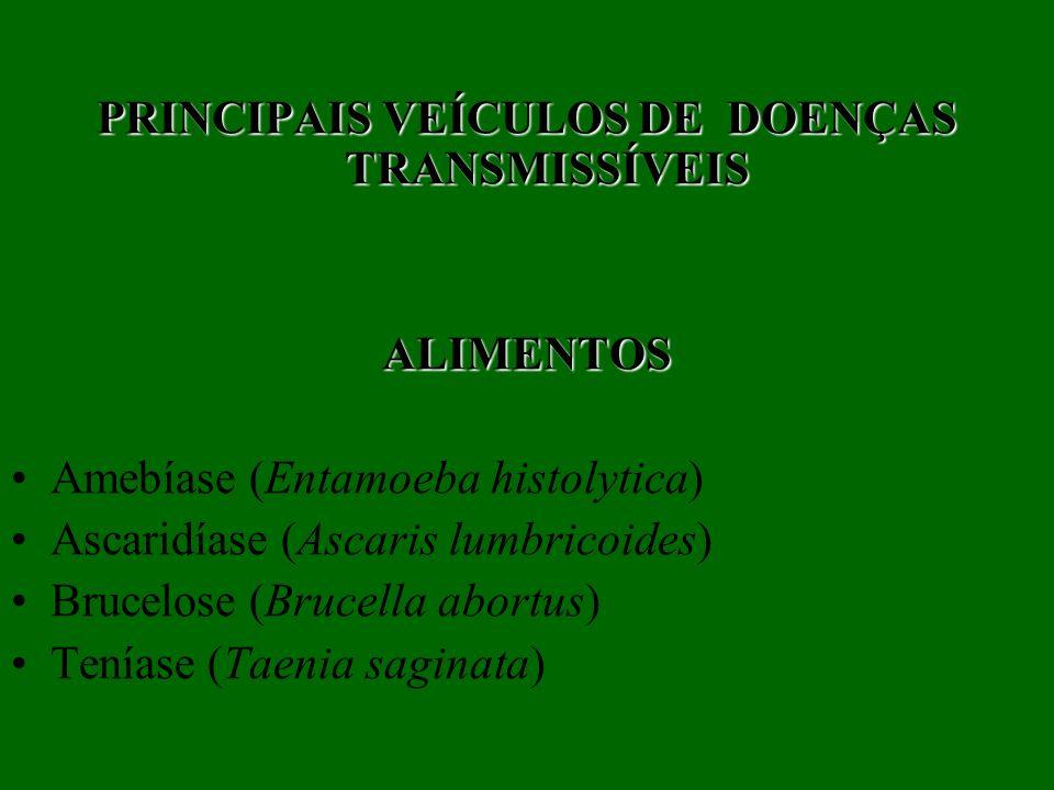 PRINCIPAIS VEÍCULOS DE DOENÇAS TRANSMISSÍVEIS