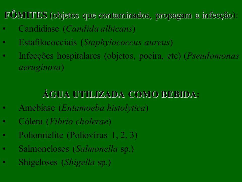 FÔMITES (objetos que contaminados, propagam a infecção):