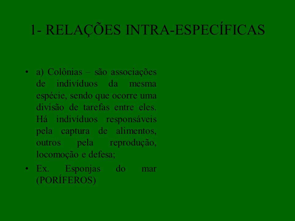 1- RELAÇÕES INTRA-ESPECÍFICAS