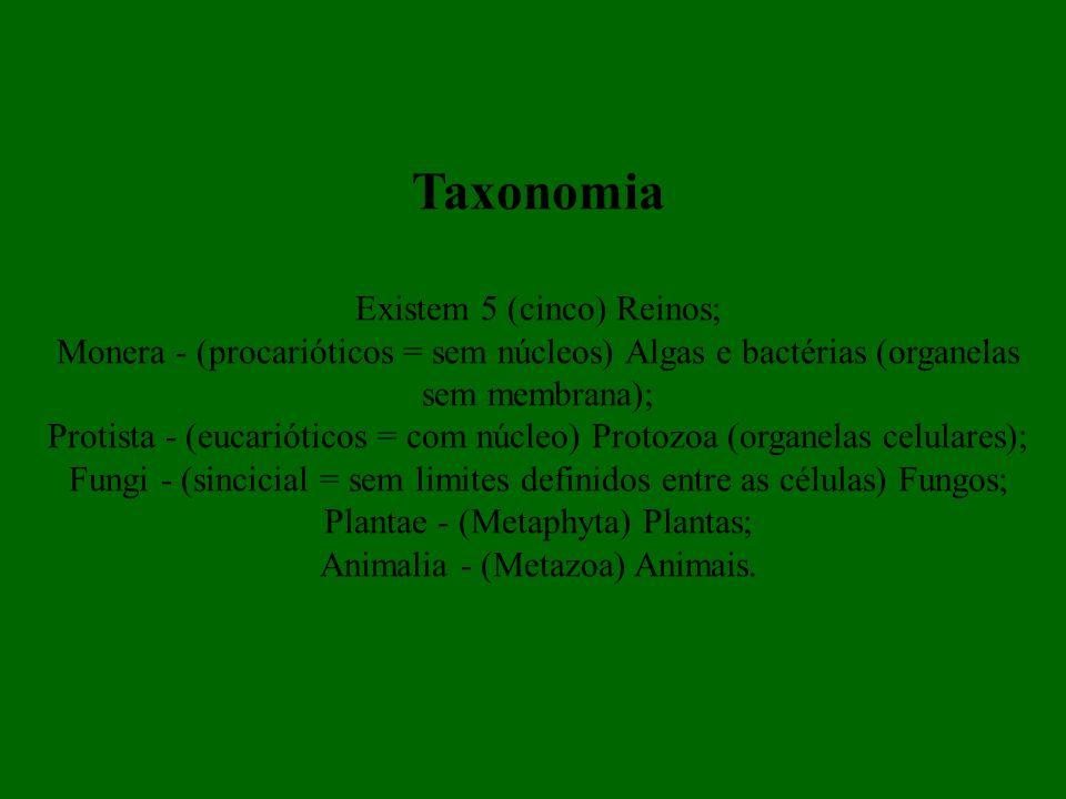 Taxonomia Existem 5 (cinco) Reinos;
