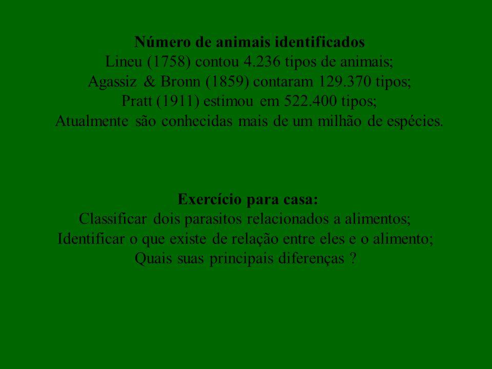 Número de animais identificados