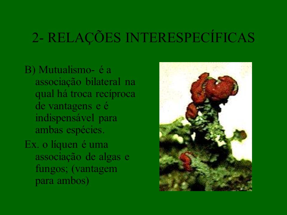 2- RELAÇÕES INTERESPECÍFICAS
