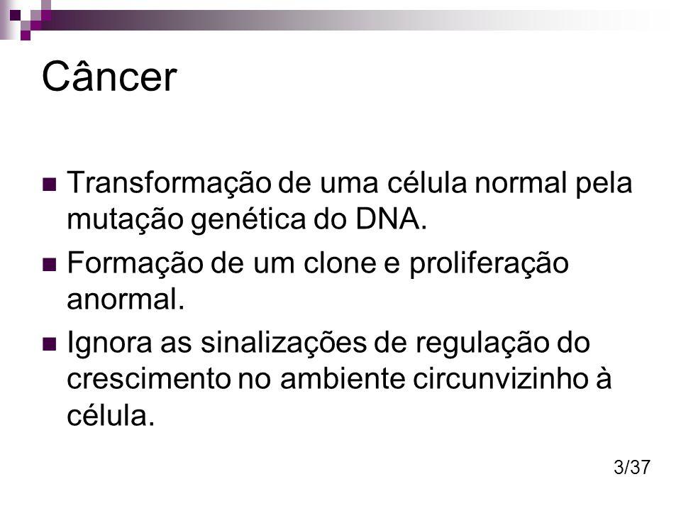 Câncer Transformação de uma célula normal pela mutação genética do DNA. Formação de um clone e proliferação anormal.